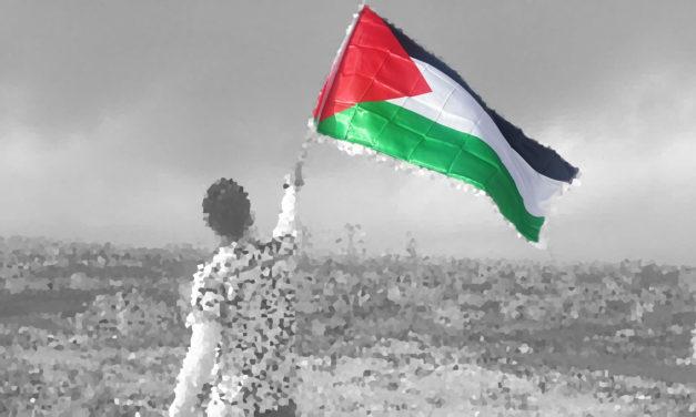 """Palestine and """"Progressive"""" Politics"""